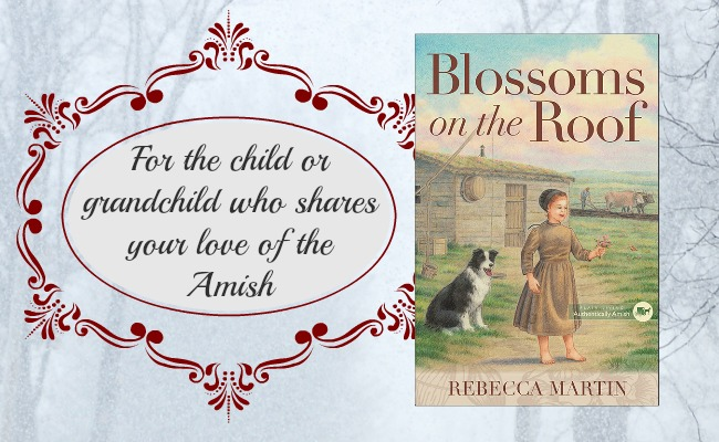 Amish Reader Gift Guide 11